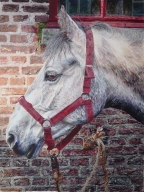 Horse Painting 2016